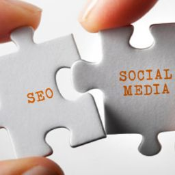 طراحی سایت یا سئو یا رسانه های اجتماعی ؟؟؟